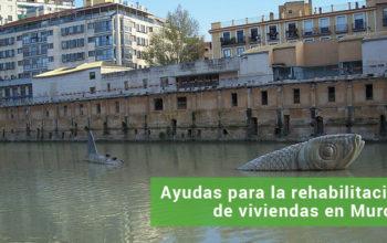 blog_ayudas_murcia