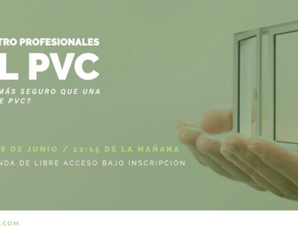 Segundo encuentro virtual de profesionales del PVC